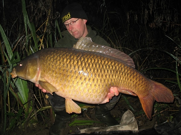 boilies 16 mm